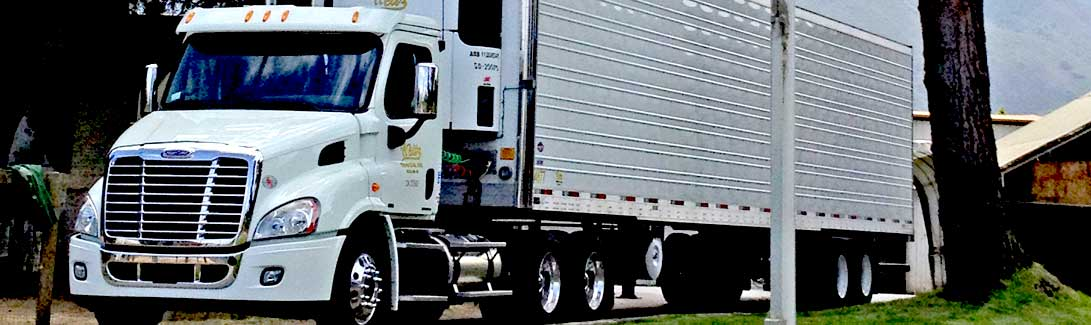 Refrigerated Trucking Services